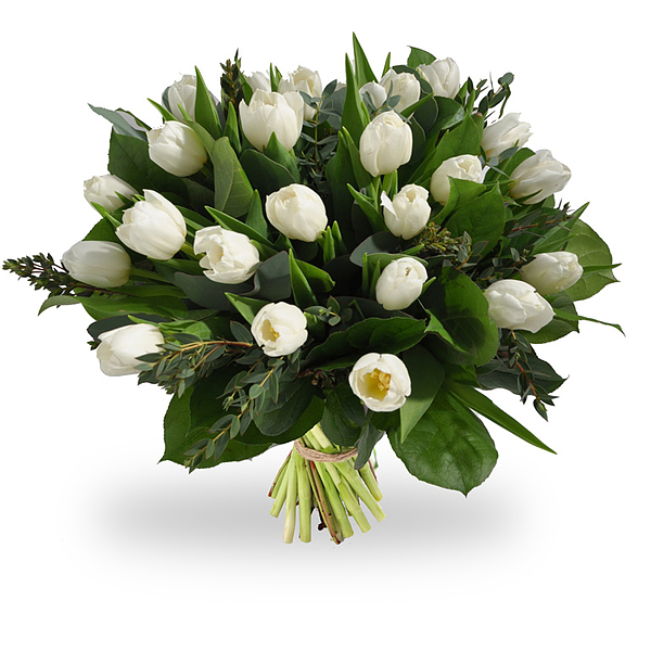 Bouquet de tulipes blanches grand