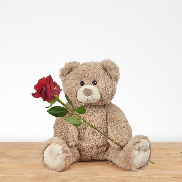 Bruine knuffel met rode roos