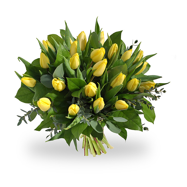 Bouquet de tulipes jaunes grand