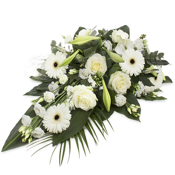 White Elegance 60cm comme image)