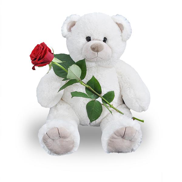 Ours en peluche blanc avec rose rouge