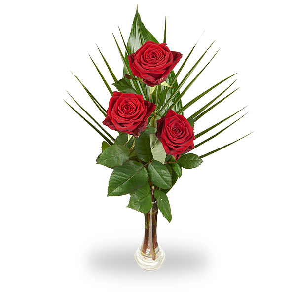 3 Rode rozen met blad inclusief vaasje