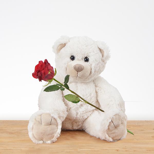 Witte knuffel met rode roos