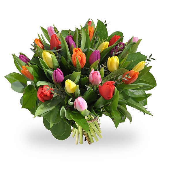 Bouquet de tulipes melangees standard